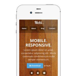 Mobile App Theme homepage